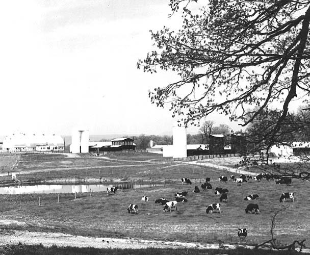 Dairy center