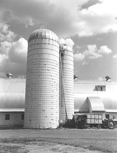 Dairy silo