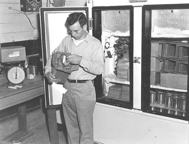 Harlan Bowman at artificial breeding center
