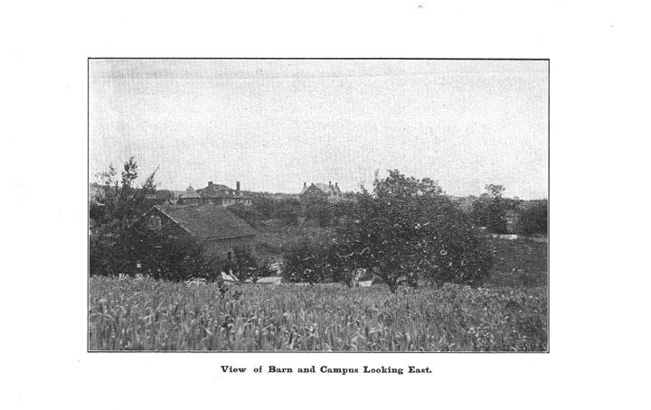 [p. 36] 1916 Annual Report
